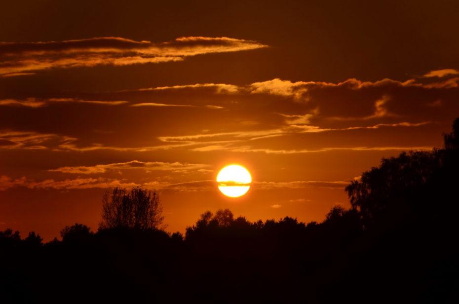 Brennende Sonne Landschaft Bäume Silhouette Wolken Gold Rot