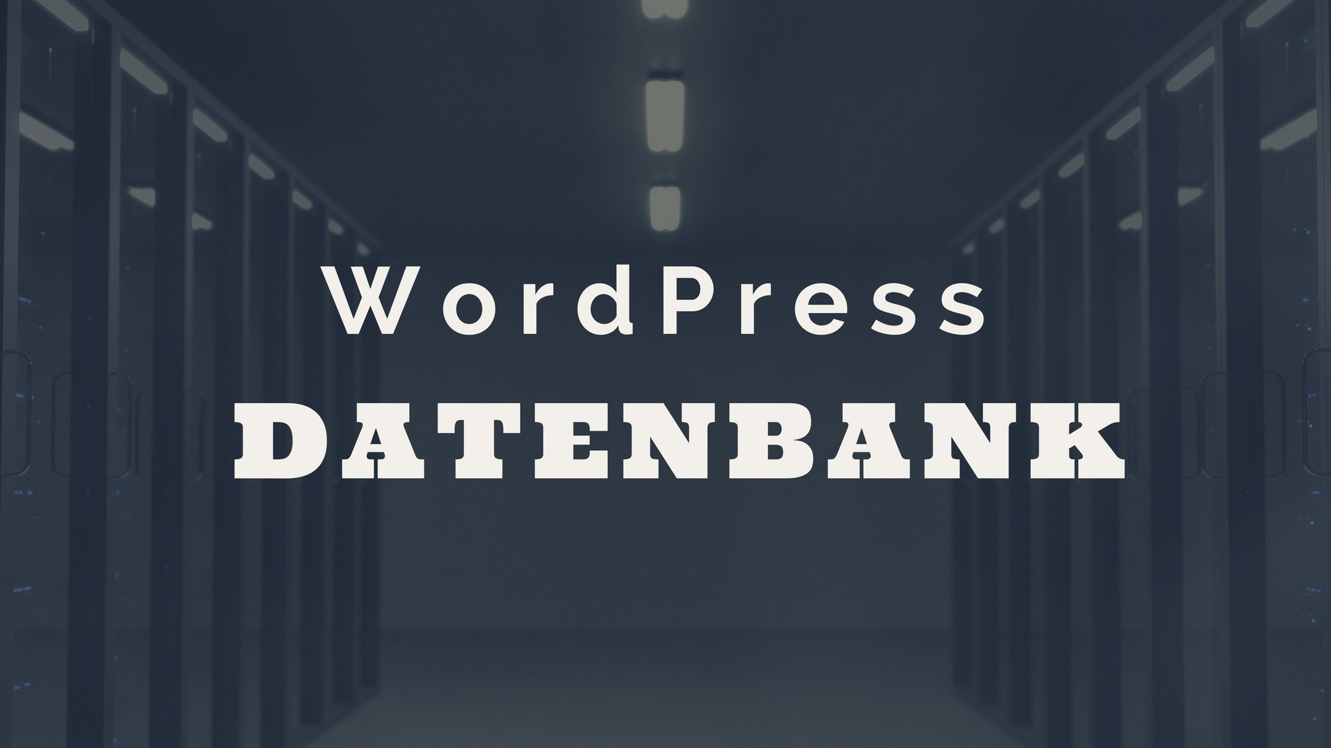 WordPress Datenbank