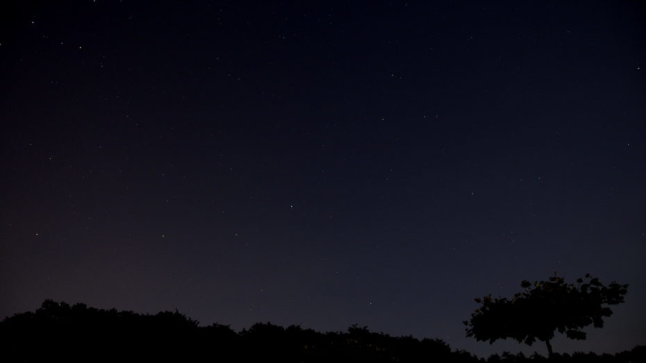 Sternenlandschaft Landschaft Baum Silhouette vor Sternen